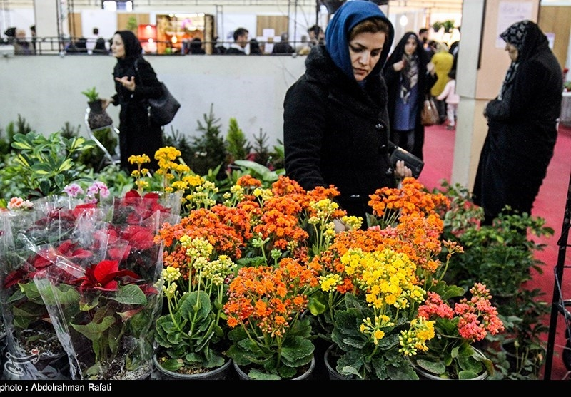 برگزاری هفدهمین دوره نمایشگاه گل و گیاه در بوستان گفتوگو