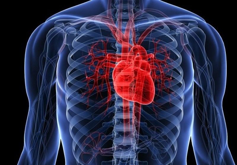"""علت """"نارسایی قلب"""" از نظر طب سنتی چیست + نسخههای ساده درمانی"""