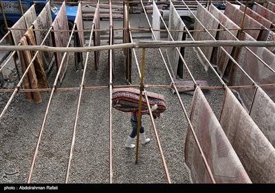 فعالیت کارگاه های قالیشویی همدان در آستانه نوروز