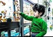 بازار داغ فروش سبزه و ماهی قرمز در کاشان+تصاویر