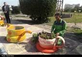 زیباسازی شهر با ابتکاری نو؛ وقتی لاستیک خودرو به گلدان تبدیل میشود
