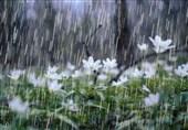 لرستان پر بارشترین استان کشور؛ 1000 میلیمتر بارندگی ثبت شد