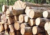 2تن چوب قاچاق در هنگ مرزی درگز خراسان رضوی کشف شد
