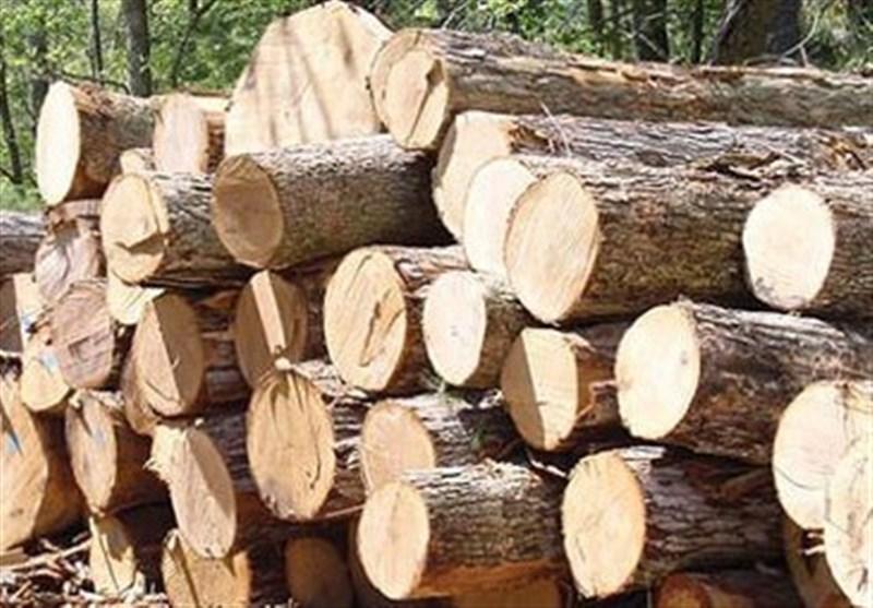 لرستان| خودروی حامل چوب درختان بلوط در کوهدشت توقیف شد