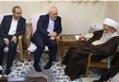 وزیر امور خارجه با آیتالله صافی گلپایگانی دیدار کرد