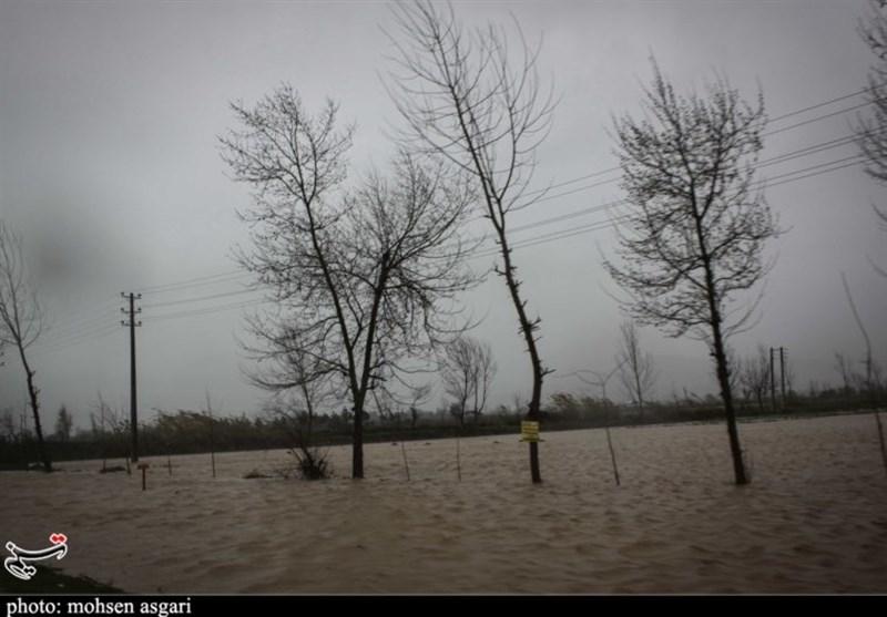 گلستان  بارش 100 میلیمتری باران در گنبدکاووس؛ 20 روستا خسارت دیدند