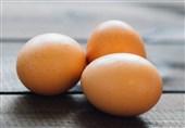 تولید تخممرغ در سمنان 3 برابر شد