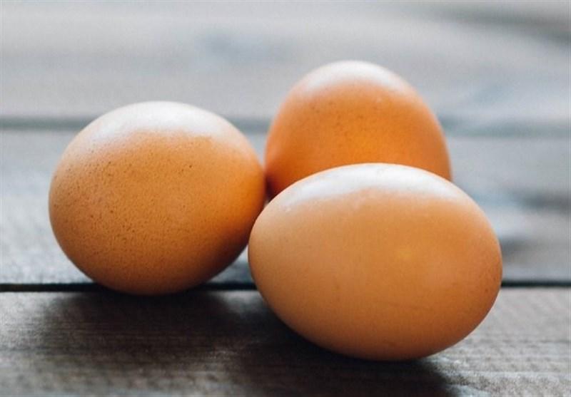 2 دلیل افزایش قیمت تخممرغ/ دبیر کانون مرغ تخمگذار: تخممرغ گران نیست