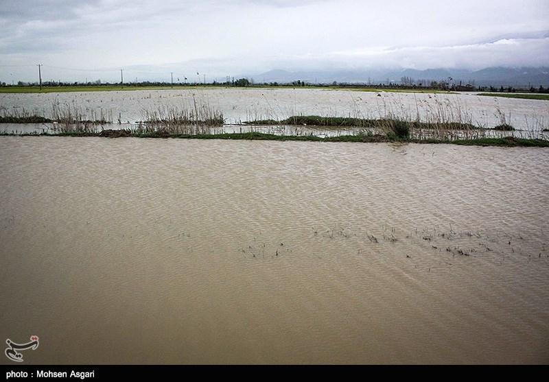 فیلم/ تصاویر هوایی اورژانس از گستردگی سیل در استان گلستان