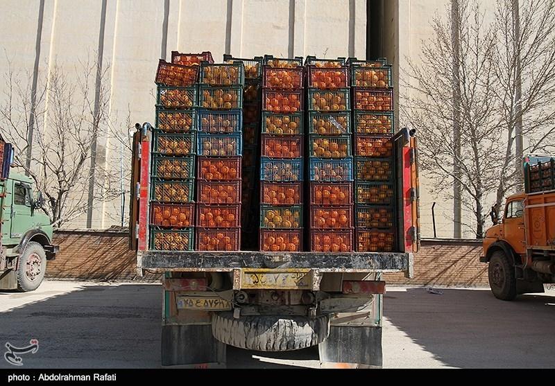 قیمت ۱۴ قلم میوه در میادین میوه و ترهبار/ پرتقال ۱۹۰۰ تومان