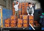 احداث بازار بزرگ میدان میوه و تره بار در میدان فتح