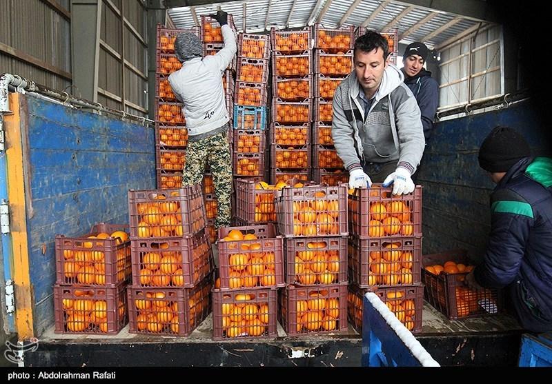 تامین میوه شب عید/ قیمت ها کاهش مییابد,