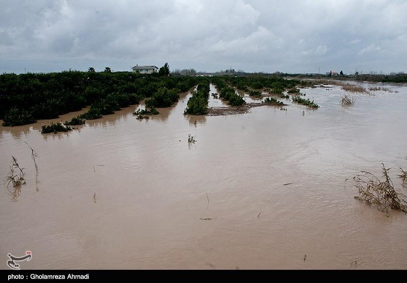 23 هزار نفر از عشایر شرق گلستان در سیلاب گرفتار شدند