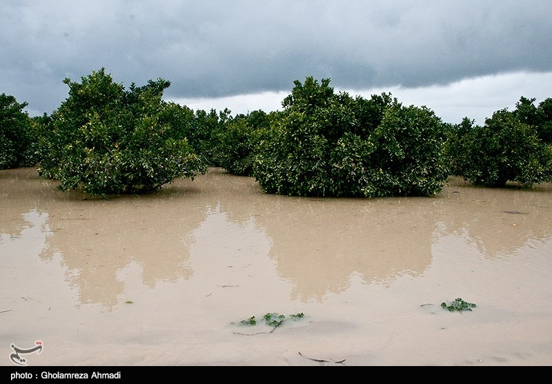 آب سدهای بوستان و گلستان فروکش کرد؛ سیلاب در حال نزدیکشدن به 3 شهرستان پاییندست گرگانرود