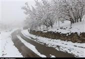 آخرین وضعیت راهها | بارش برف و باران در جادههای 3 استان