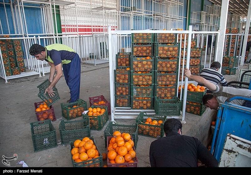 قیمت انواع میوه، ترهبار و مواد پروتئین 17 اردیبهشتماه در اهواز + جدول
