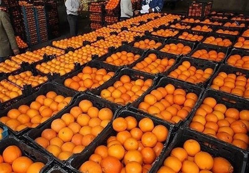 نصف میوه های تنظیم بازاری برای نوروز 98 توزیع شد