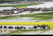 پرداخت 90 میلیارد تومان کمک بلاعوض به کشاورزان سیلزده گلستان