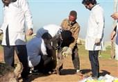 خوزستان| اردوی جهادی دانش آموختگان بسیجی رشته دامپزشکی برای کمک به مردم مناطق محروم ایذه + تصاویر