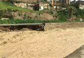سیل به 200 پل و 500 کیلومتر راه ارتباطی کهگیلویه و بویراحمد خسارت زد