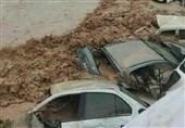 ورود سیلاب به شرق شیراز؛ طغیان رودخانهها و احتمال رانش زمین/در محله سعدی آب وارد منازل مردم شد