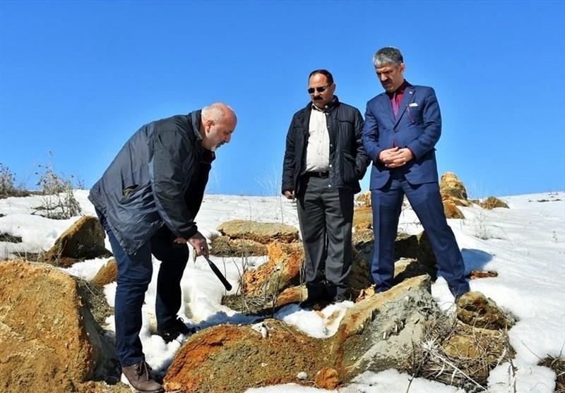 کشف فسیلهای 11 میلیون ساله در ترکیه + عکس