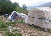 سیل 22 میلیارد تومان به عشایر استان کرمانشاه خسارت وارد کرد