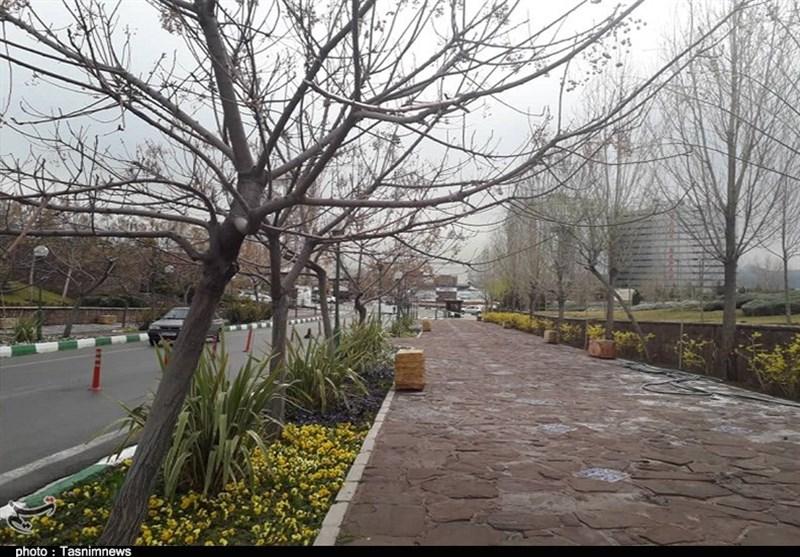 بارشهای بهاری در چهارمحال و بختیاری ادامه دارد