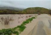 24 میلیارد تومان اعتبار به کشاورزان سیلزده کوهدشت پرداخت میشود