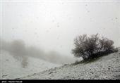 بارش برف بهاری در استان اردبیل؛ دمای هوای اردبیل تا 12 درجه کاهش یافت