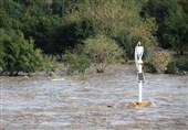 ورود آب بارشهای باران به رودخانههای استان بوشهر 2.5 برابر افزایش یافت