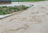 سیل 32 میلیارد ریال به تأسیسات برقی کهگیلویه و بویراحمد خسارت وارد کرد