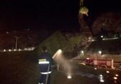 عامل آتشسوزی مجسمه طاووس در شیراز دستگیر شد
