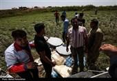 بالغ بر10 تن اقلام درمانی از استان البرز برای سیلزدگان خوزستان ارسال شد