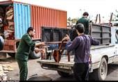 3 میلیارد تومان کمکهای نقدی و غیرنقدی مردم استان همدان به مناطق سیلزده ارسال شد