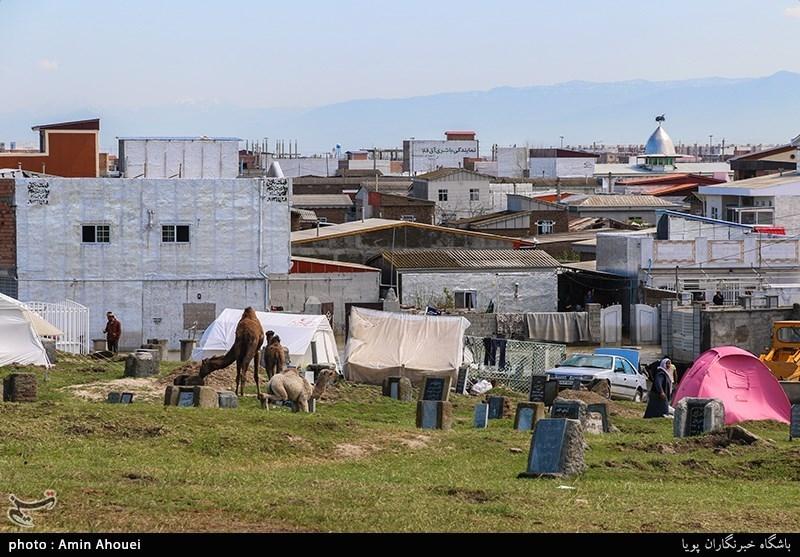 قوش تپه اکنون پناهگاه برخی از مردم و اکثر دام های این شهرستان از سیل شده است.