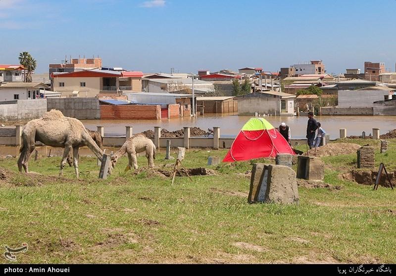 آرامگاه قوش تپه به علت ارتفاع زیاد و دور از سیلاب بودن به عنوان محلی امن برای اسکان برخی از اهالی آق قلا شده است