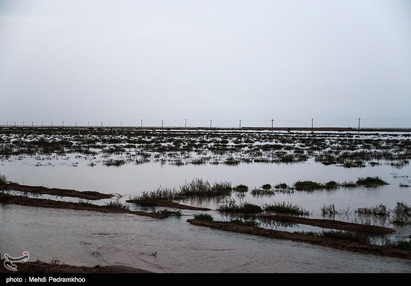 مردم قزوین از نزدیک شدن به رودخانه و سد زیاران خودداری کنند