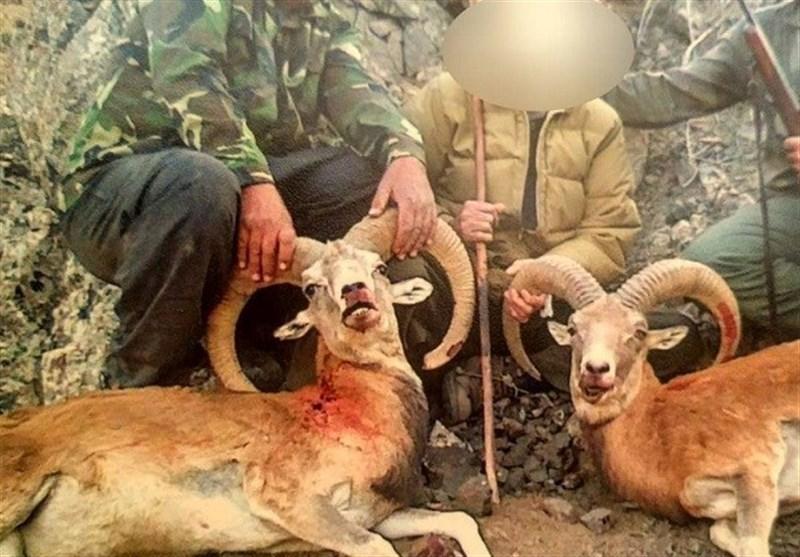 دستگیری محیطبانی که با شکارچیان همکاری میکرد؛ 2 شکارچی متخلف در دام قانون