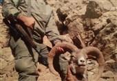 4 شکارچی متخلف در منطقه حفاظتشده کرکس نطنز دستگیر شد