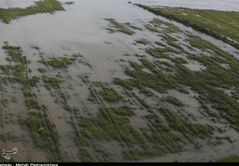 سیل 2 میلیارد دلار به ایالت ایوای آمریکا خسارت زد
