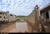 پویش «حمایت دانشگاهیان ایران از سیلزدگان کشور» راهاندازی شد