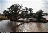 «معجزه آبخیزداری»| ضرورت تصویب قانون مدیریت جامع حوزۀ آبخیز در مجلس