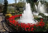 ایران میں موسم بہار، پھولوں کے دلفریب مناظر