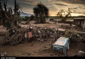 ایران و بحرانها؛ کبکها و مگسها و کرکسها