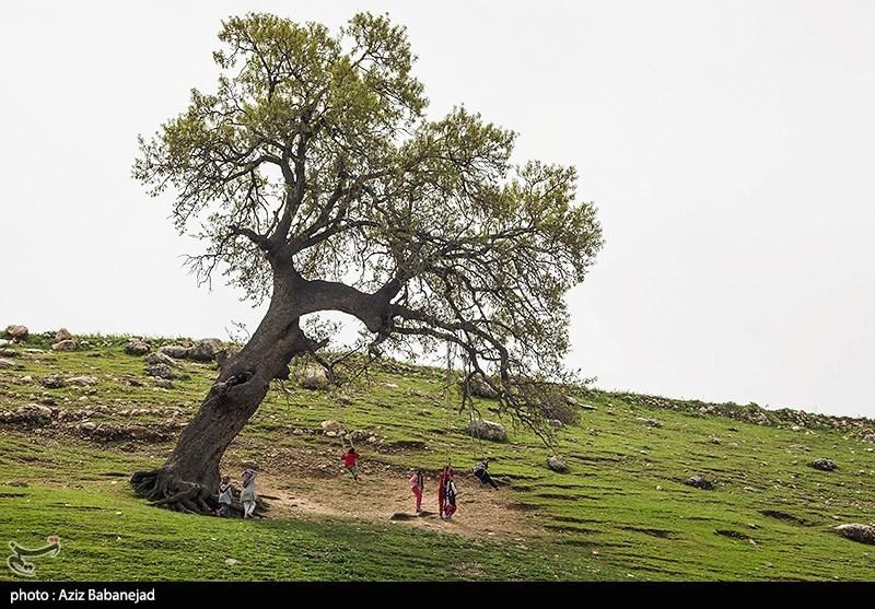 روستای شاهیوند- پلدختر