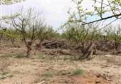 خوزستان  خسارات سیلاب با اکتفا به سد سازی کاهش پیدا نمیکند