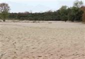 خراسان جنوبی| در پی وقوع سیلاب دستور تخلیه 4 روستا در سربیشه و خوسف صادر شد