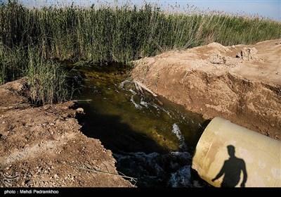 آبگیری تالاب هورالعظیم پس از سیل
