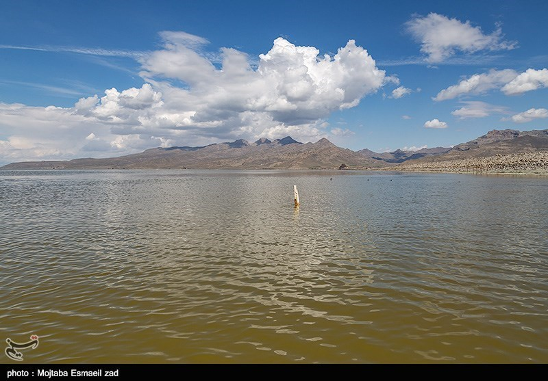 تراز دریاچه ارومیه روند افزایشی به خود گرفته است/تلاش اداره کل حفاظت محیط زیست برای جلوگیری از انقراض«میشمرغ»